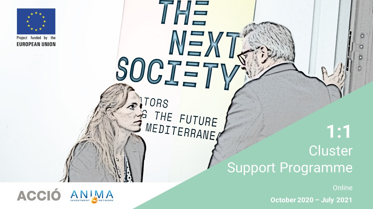 Mentoring for Cluster THE NEXT SOCIETY